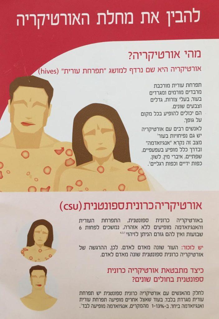 עברית ורנר