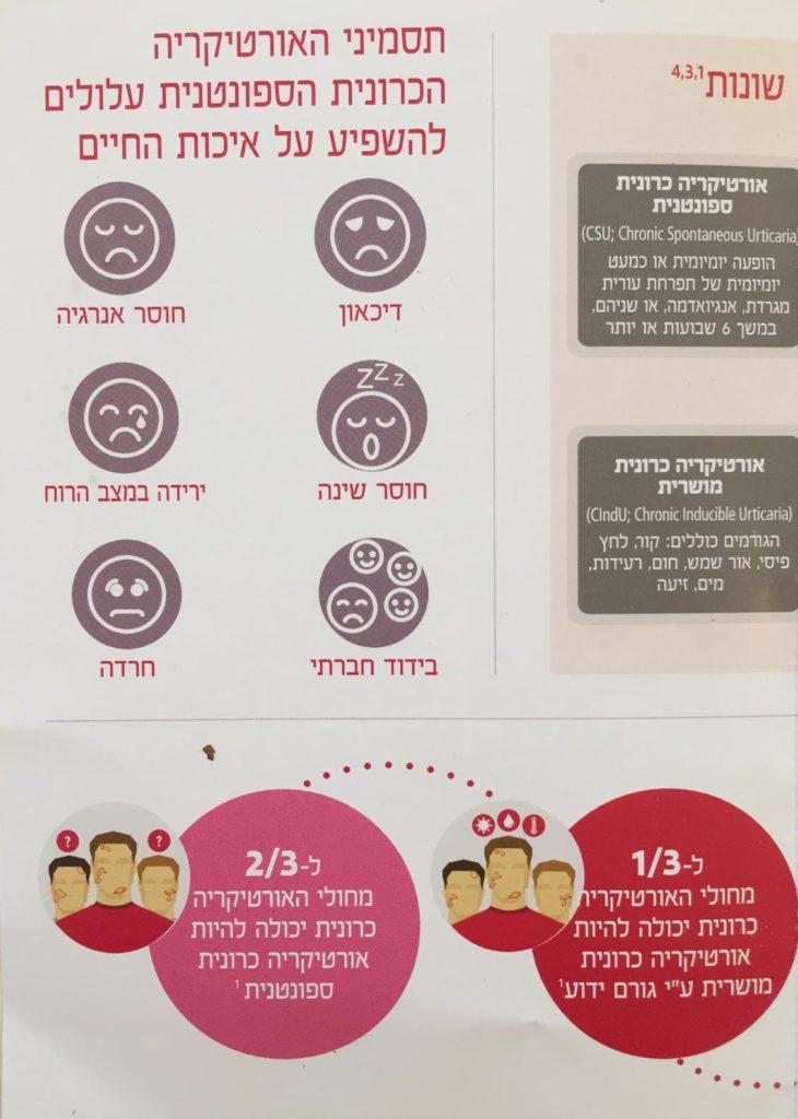 עברית ורנר1