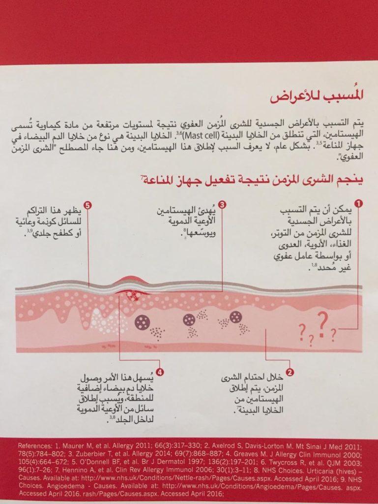 ערבית ורנר1
